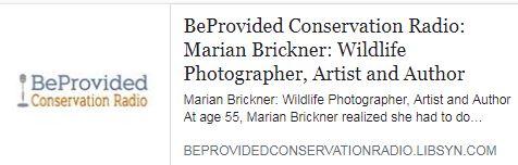 Marian Brickner Interfview